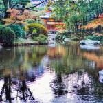 友泉亭公園にて撮影。